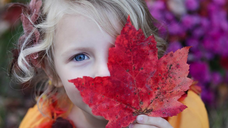 Educación infantil en Finlandia: una educación calmada